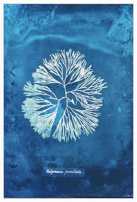 Jonathan Bass Studio Natural Forms Blue 6, Decorative Framed Hand Embellished Canvas