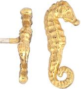 Sea Horse Stud Earrings
