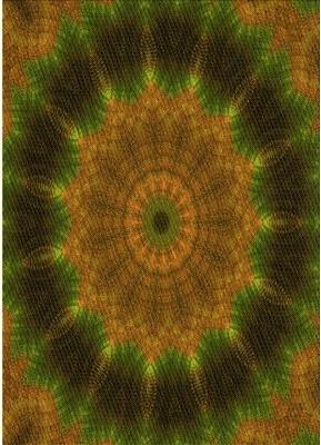 Avon East Urban Home Wool Yellow Area Rug East Urban Home Rug Size: Rectangle 2' x 4'