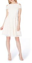 Tahari Lace Cold Shoulder A-Line Dress (Regular & Petite)