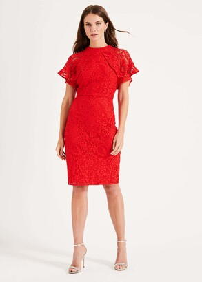 Phase Eight Luisa Lace Dress