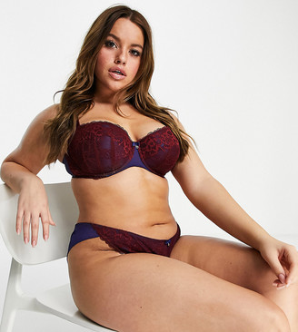 Ann Summers Curve sexy lace balconette bra in burgundy and navy