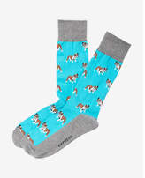 Express bulldog print dress socks