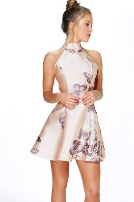 boohoo Sateen Butterfly Print Fit and Flare Dress