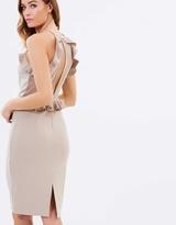 Miss Selfridge Mesh Insert Frill Pencil Dress