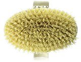 Hydrea Professional Dry Skin Body Brush with Cactus Bristles (Firm/Extra Firm Bristles) by London