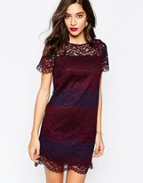 Warehouse Stripe Lace Dress