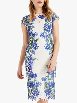Phase Eight Kyra Floral Lace Placement Tailored Dress, Ivory/Multi