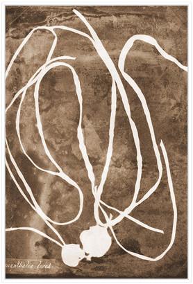 Jonathan Bass Studio Natural Forms Sepia 5, Decorative Framed Hand Embe