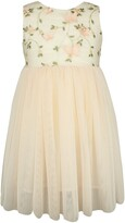 Popatu Floral Embroidered Tulle Fit & Flare Dress
