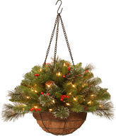 NATIONAL TREE CO National Tree Company 20 Crestwood Spruce Chain Hanging Basket with Battery-Operated LED Lights