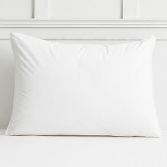 Pottery Barn Teen Stay Fresh Pillow Insert