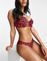 Thumbnail for your product : Pour Moi? Pour Moi Fuller Bust Heatwave bikini top in animal print