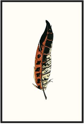 Jonathan Bass Studio Painted Feather C, Decorative Framed Hand Embellished Canvas