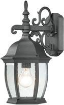 Thomas Laboratories Lighting Covington 1-Light Black Outdoor Wall-Mount Lantern