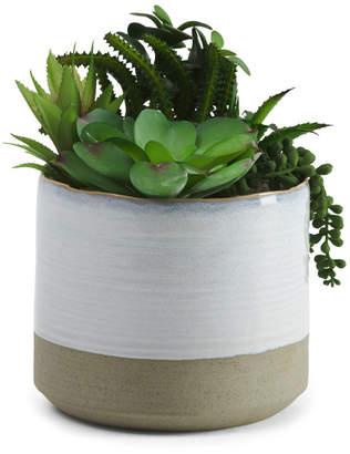 Faux Succulents In Large Glazed Pot