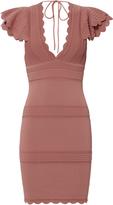 Ronny Kobo Rafela Ruffle Sleeve Dress