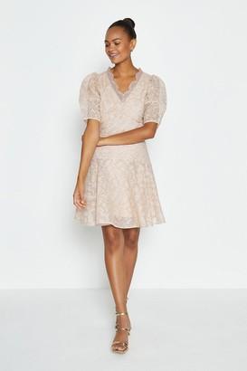 Coast Broidery Organza Puff Sleeve Short Dress