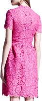 Valentino Heavy Lace Bambolina Dress, Fuchsia