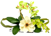 Orchids in Tray Floral Arrangement