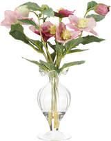 OKA Miniature Vase of Hellebores