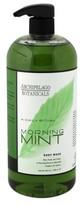 Archipelago Botanicals Morning Mint Body Wash - 33 fl oz
