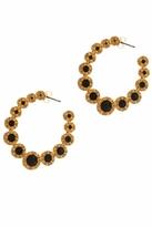 House Of Harlow Olbers Paradox Hoop Earrings in Gold