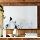 west elm Framed Prints - Horses