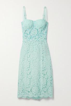 Dolce & Gabbana Cotton-blend Corded Lace Midi Dress - Sky blue