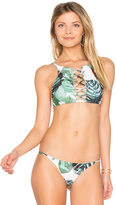 Stone Fox Swim Iver Bikini Top