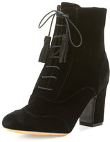 Tabitha Simmons Afton Velvet Lace-Up Bootie, Black
