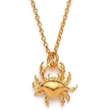 Harry Rocks Crab Necklace