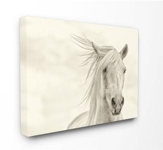 Stupell Home Decor Horse Canvas Wall Decor