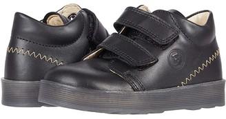 Naturino Falcotto Harlan VL AW20 (Toddler) (Black) Boy's Shoes