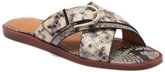 Joie Panther Snake Embossed Leather Slide Sandal
