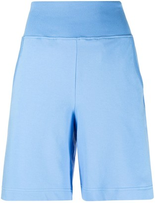 Alberta Ferretti High-Waisted Cotton Shorts