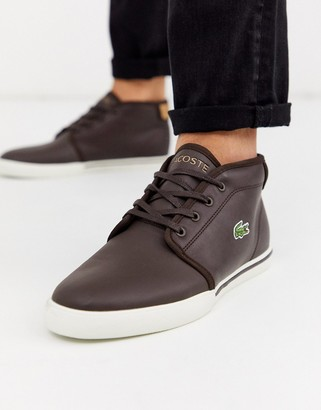 Lacoste amptill chukka boots in Brown-Navy