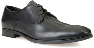 Geox New Life Water-Repellent Derby