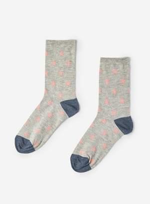 Dorothy Perkins Womens Grey Star Socks, Grey