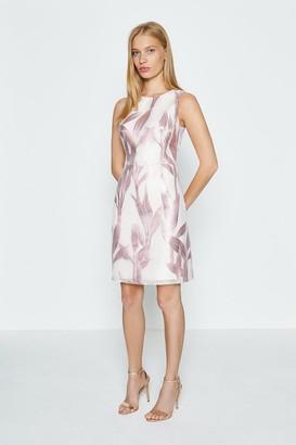 Coast A-Line Floral Jacquard Dress