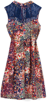 Speechless Navy & Orange Floral Lace-Accent Shift Dress