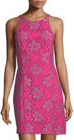 Kensie Allover Lace Sleeveless Dress, Pink