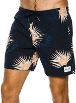 rhythm Pacifico Jam Short