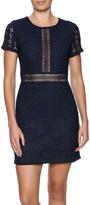 Babel Fair Lace Overlay Dress