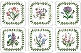 Pimpernel Botanic Garden Coasters - Set of 6