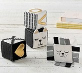 Pottery Barn Kids Emily & Merritt Kitty & Lion Blocks Set of 4
