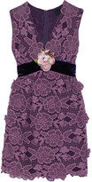 Anna Sui Camilla Velvet-trimmed Crocheted Lace Mini Dress - Plum