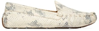 Cole Haan Evelyn Snakeskin-Embossed Leather Loafers