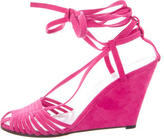 Robert Clergerie Suede Gipsy Wedge Sandals