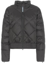 adidas by Stella McCartney Essentials Padded Jacket